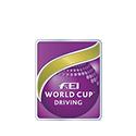 fei_driving